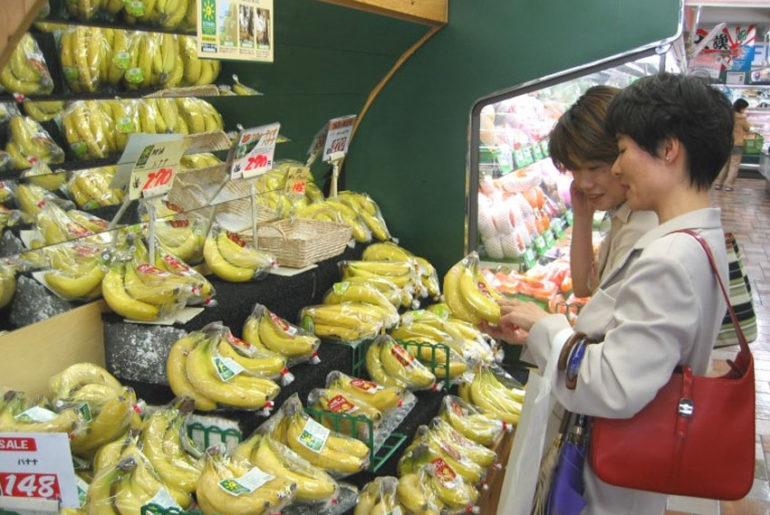 ekspor pisang ke jepang-indonetwork-dok