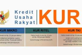 kur-indonetwork-dok