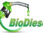 biodiesel-indonetwork-dok