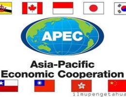 apec2018-indonetwork-dok2