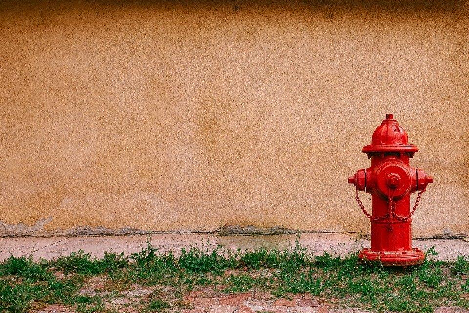 aneka valve_check valve